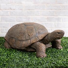 Tortoise Statue