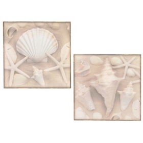 Scratch the Surface Plaque, Set of 2