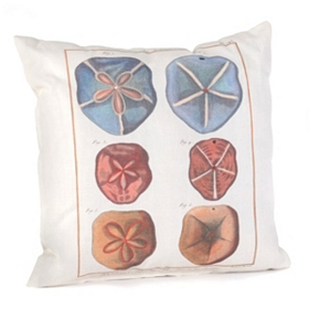 Romance Of The Shell Outdoor Pillow