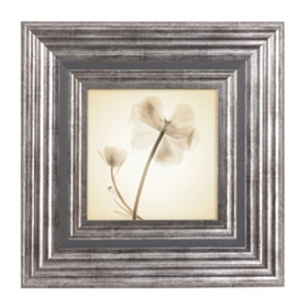 X-ray Floral II Framed Art Print